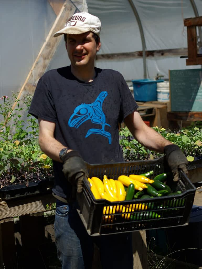 A young man holds a basket full of yellow and green zucchini.